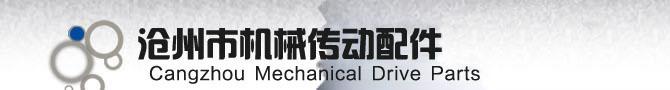 沧州市机械传动配件有限公司